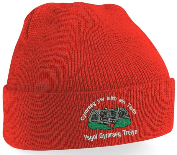 YG Trelyn Knitted Hat