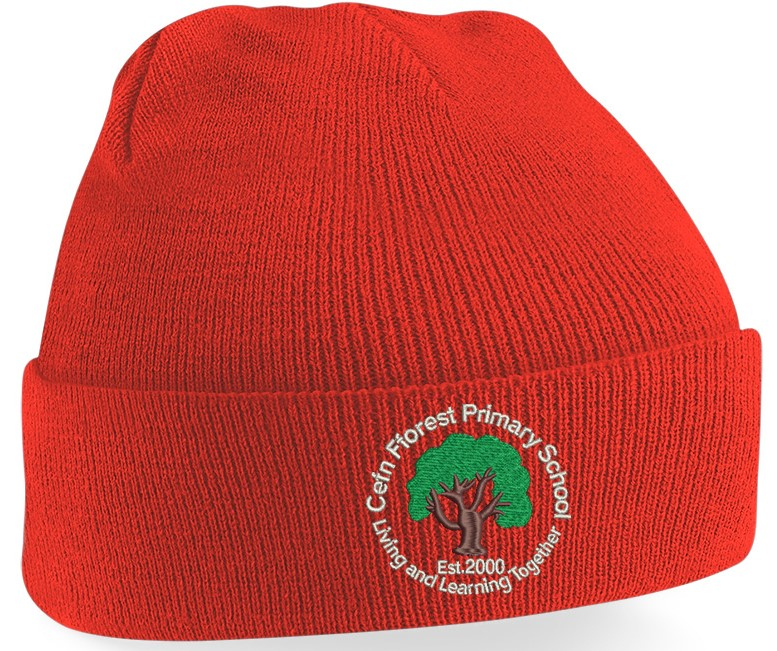 Cefn Fforest Knitted Hat